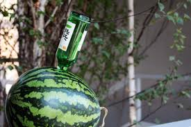 soju-watermelon-copy